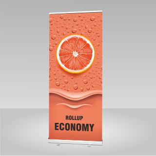 RollUP-Display Economy